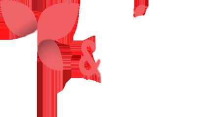 bg_logo_azienda_2.png